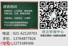 上海TCSL对外汉语教师培训、理论与实践并重